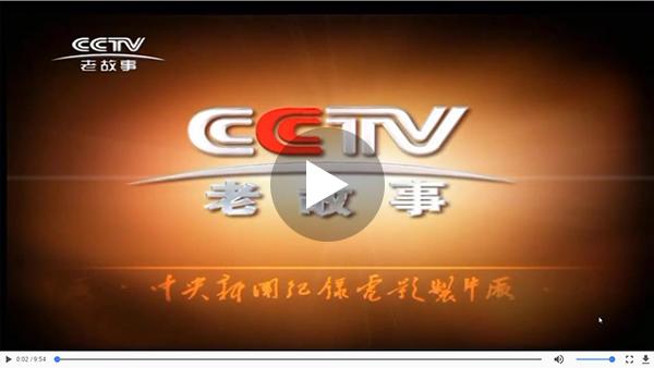 CCTV匠心栏目报道康华绳锯机
